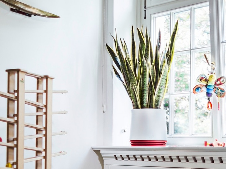 10+ Home Inventions We've Been Waiting For